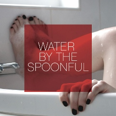 Water By the Spoonful  by Quiara Alegria Hudes, Directed by Edward Torres at the Old Globe Theatre (2014)