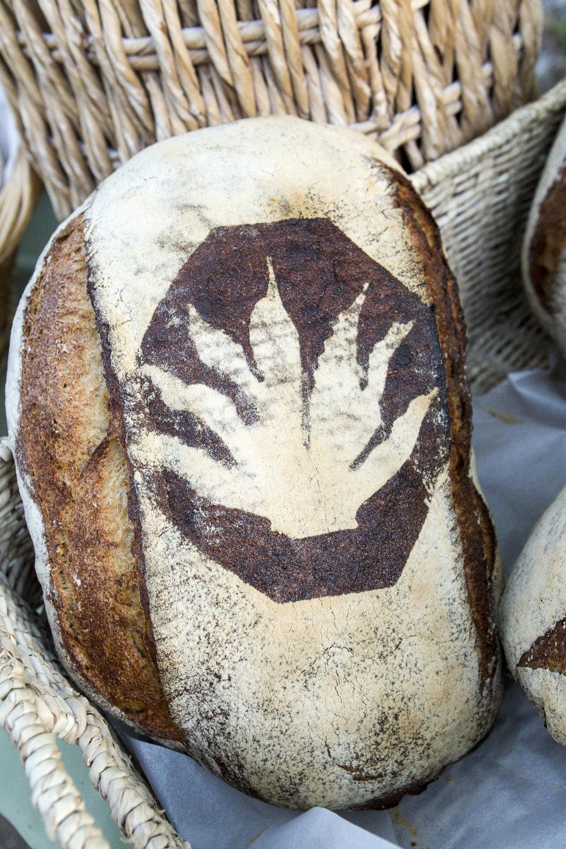 Pulque Barrio Bread_L6H1424_ahf_trade show.JPG