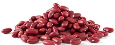 Kidney - KIDNEY BEANS