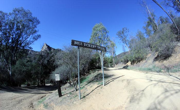 billeckerttrail