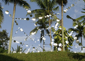 Jaring by Tina Born, 2007, site specific installation; wire, aluminum disks, variable size.