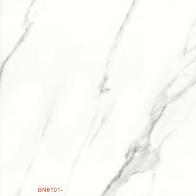 BN6101-