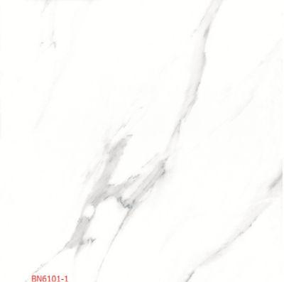 BN6101-1