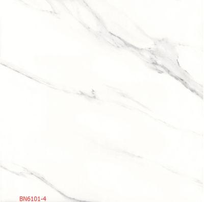 BN6101-4