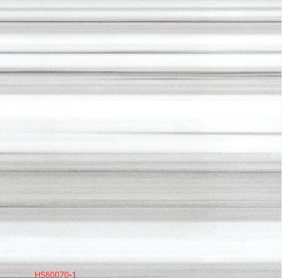 HS60070-1