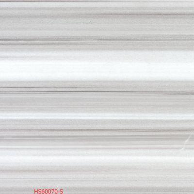 HS60070-5