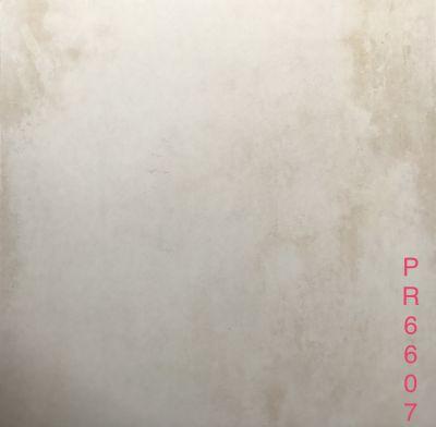 PR6607