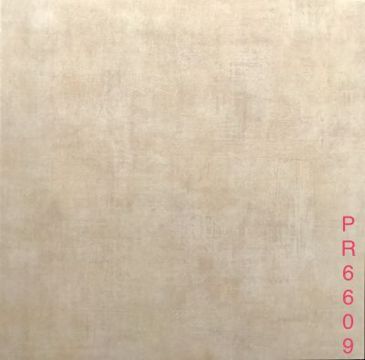 PR6609
