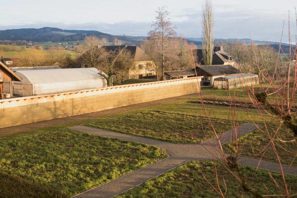 Rosengarten 3.jpg