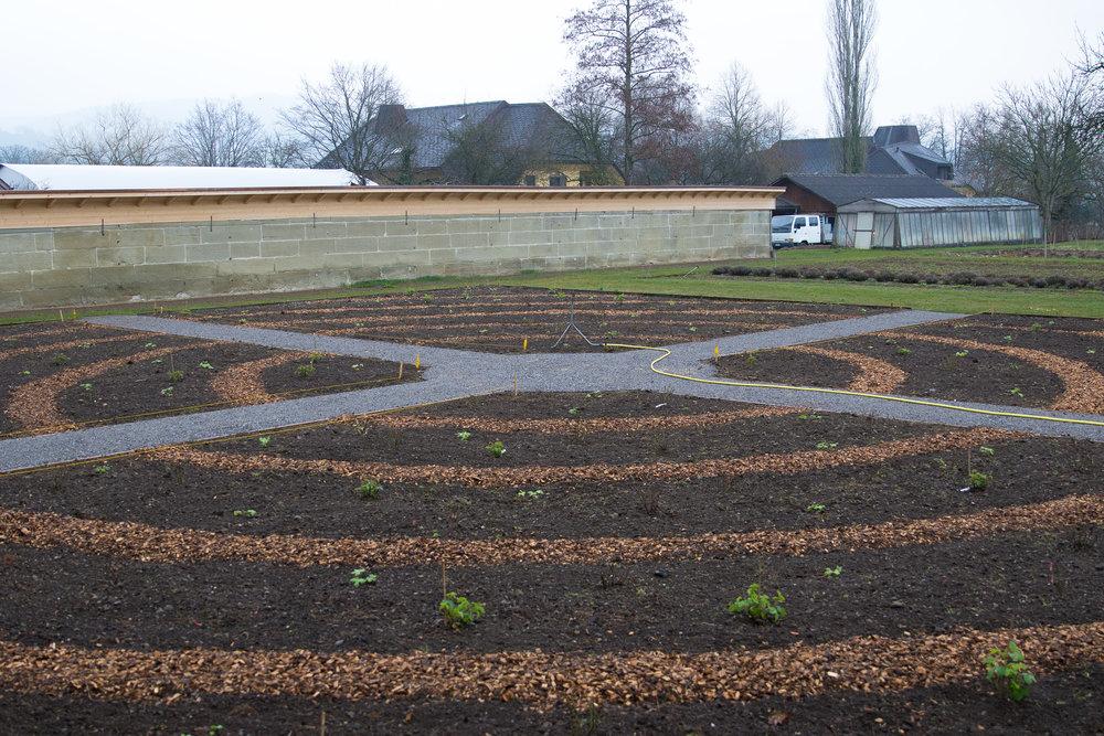 Rosengarten 4.jpg