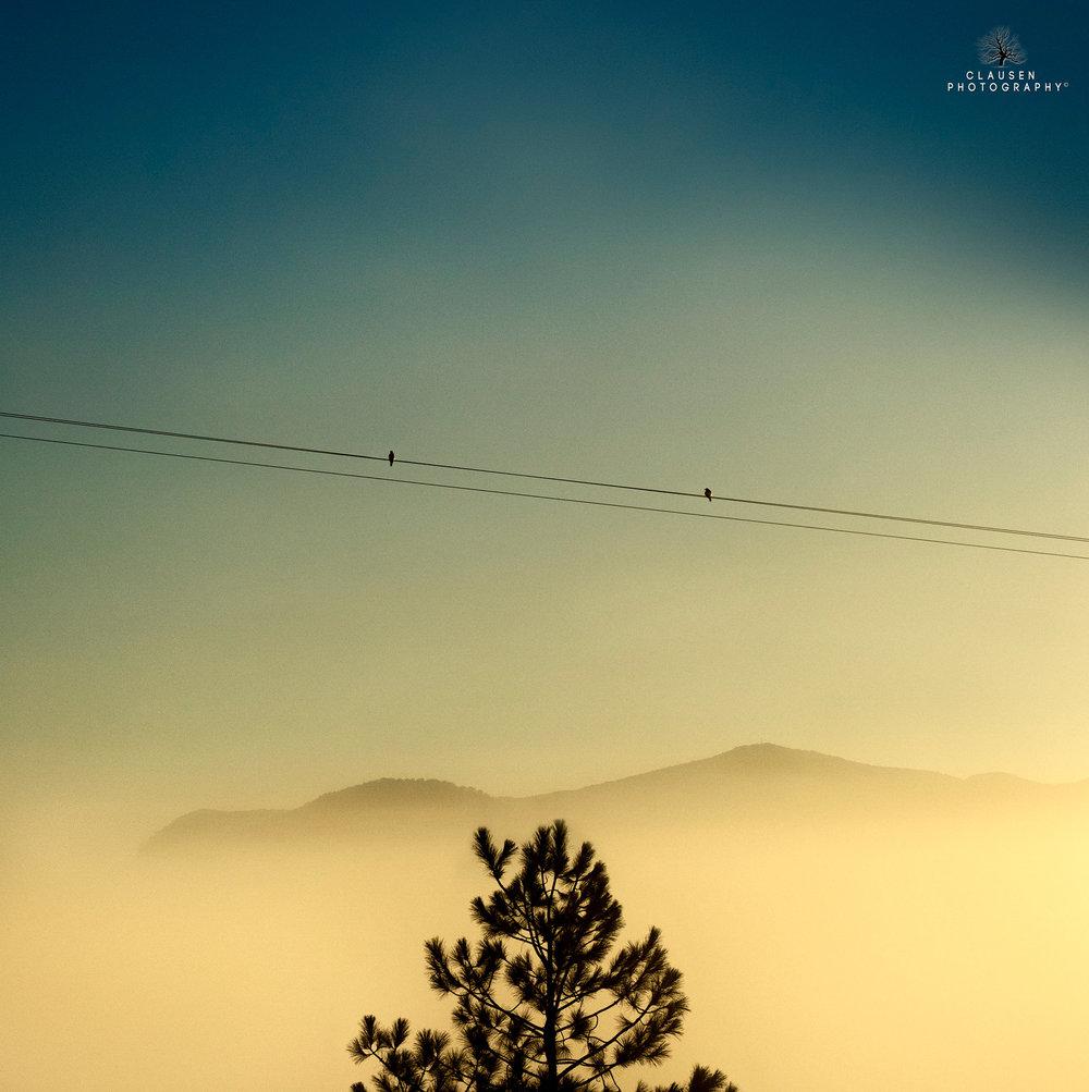 Fine_+Art_Landscape_Photography_Jannick_Clausen_2014-07-04+07.26.26.jpg