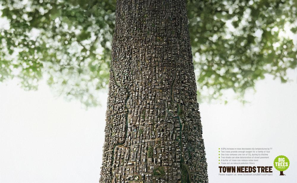 Town_Need_Tree_Step.jpg