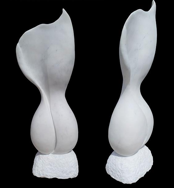 Gynecium