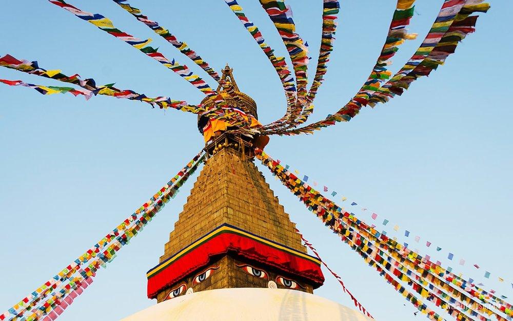 wildlifejosh_boudhastupa_nepal-min.jpg