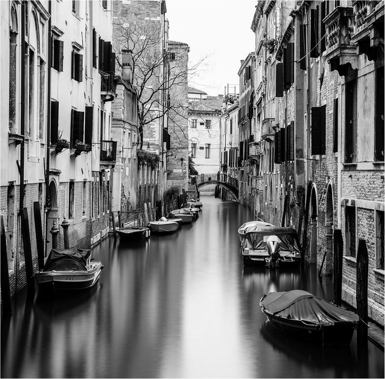 Backwater, Venice © Elaine Adkins