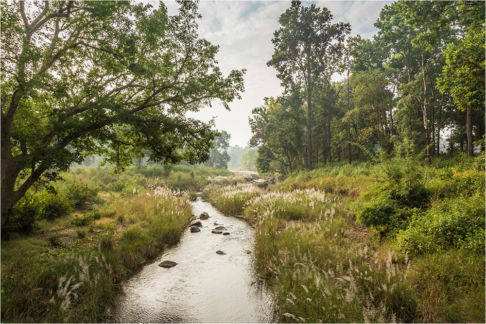 MEANDERING STREAM © Ian Francis ARPS DPAGB