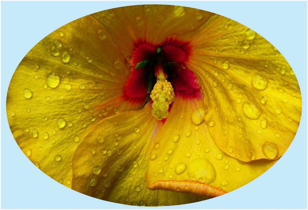 Raindrops Keep Falling © David Angell