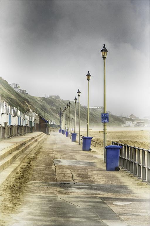 The Bin Blue Line © Jules Syrett