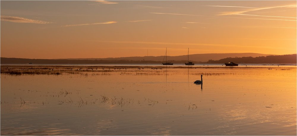 Sunrise Keyhaven.jpg