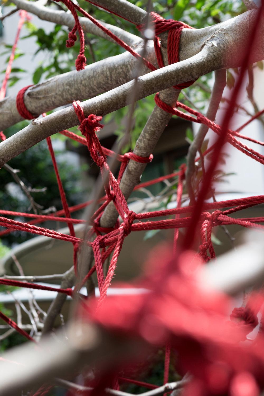 hôtel_mandarin_oriental_paris_terrasses_jardins_installation_artistique_the_red_garden_christophe_gautrand_paysagiste_4.jpg
