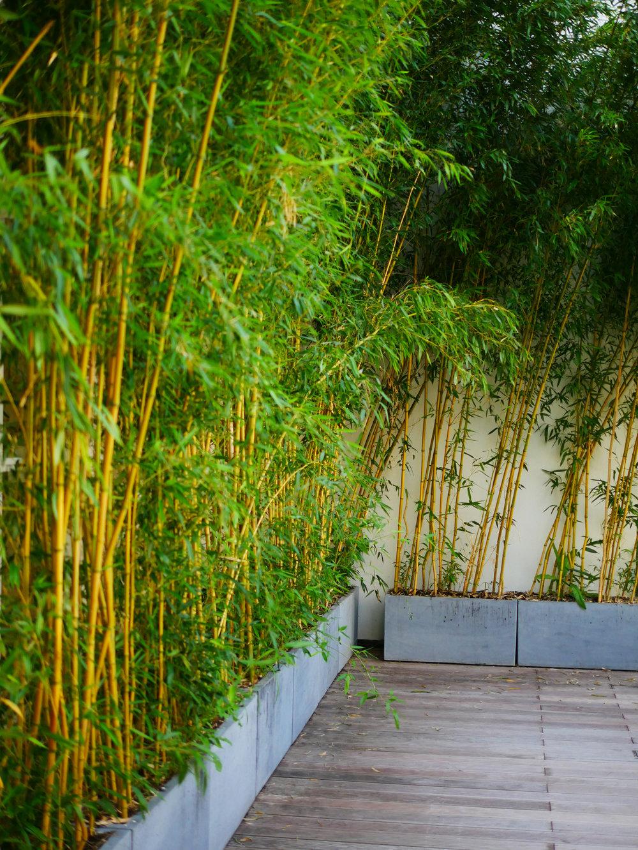 kwerk_haussmann_coworking_paris_terraces_gardens_christophe_gautrand_landscape_outdoor_designer_3.jpg