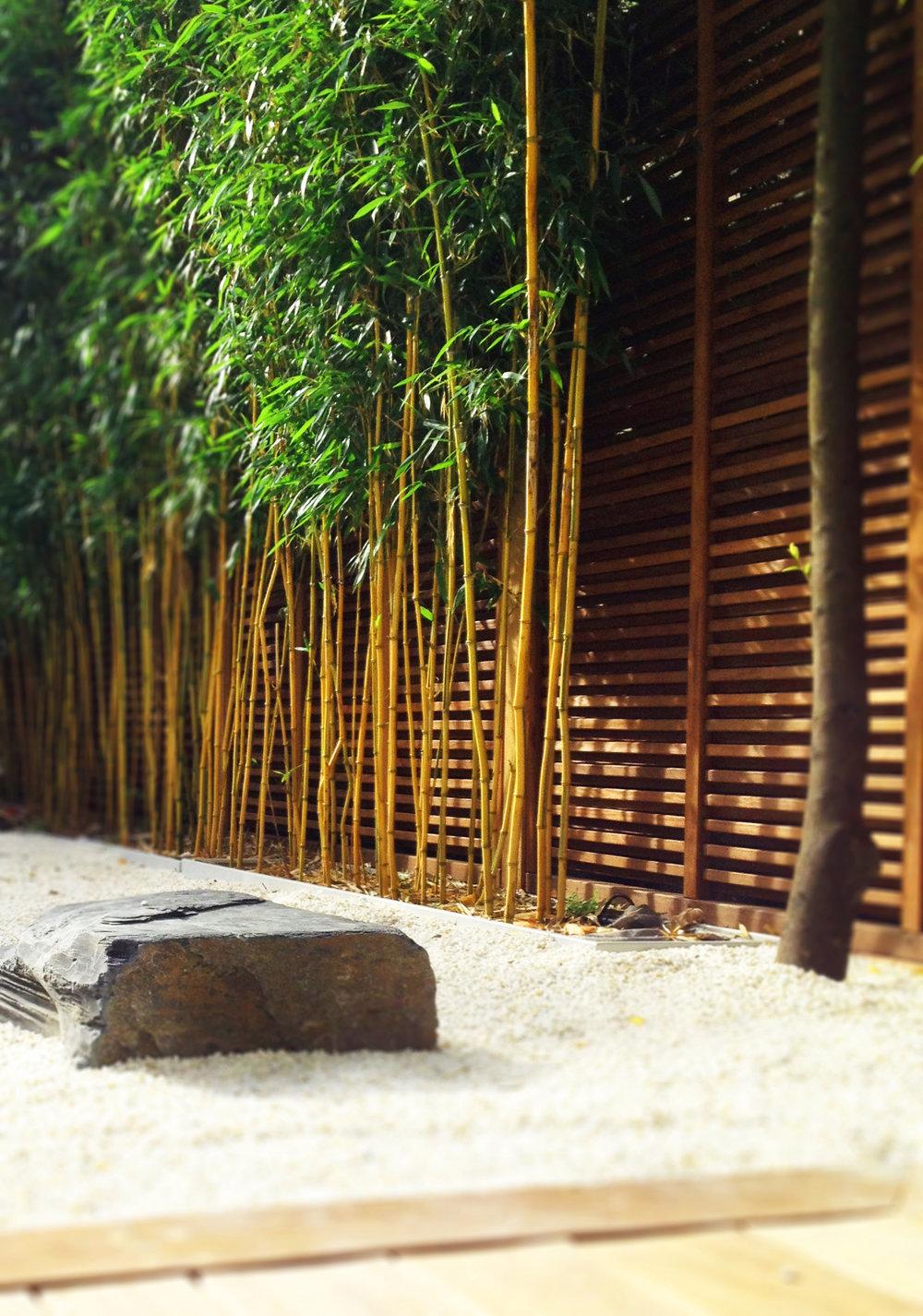 neuilly_garden_paris_terraces_gardens_christophe_gautrand_landscape_outdoor_designer_4.jpg