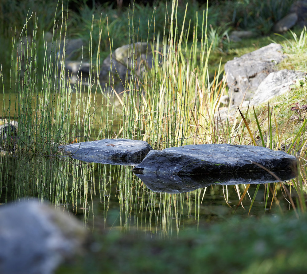 Jardin Sauvage, Hautes-Pyrénées   Située au cœur d'un site exceptionnel cette ancienne métairie, propriété familiale, retrouve un sens et des usages l'inscrivant durablement dans son contexte géographique et paysager.