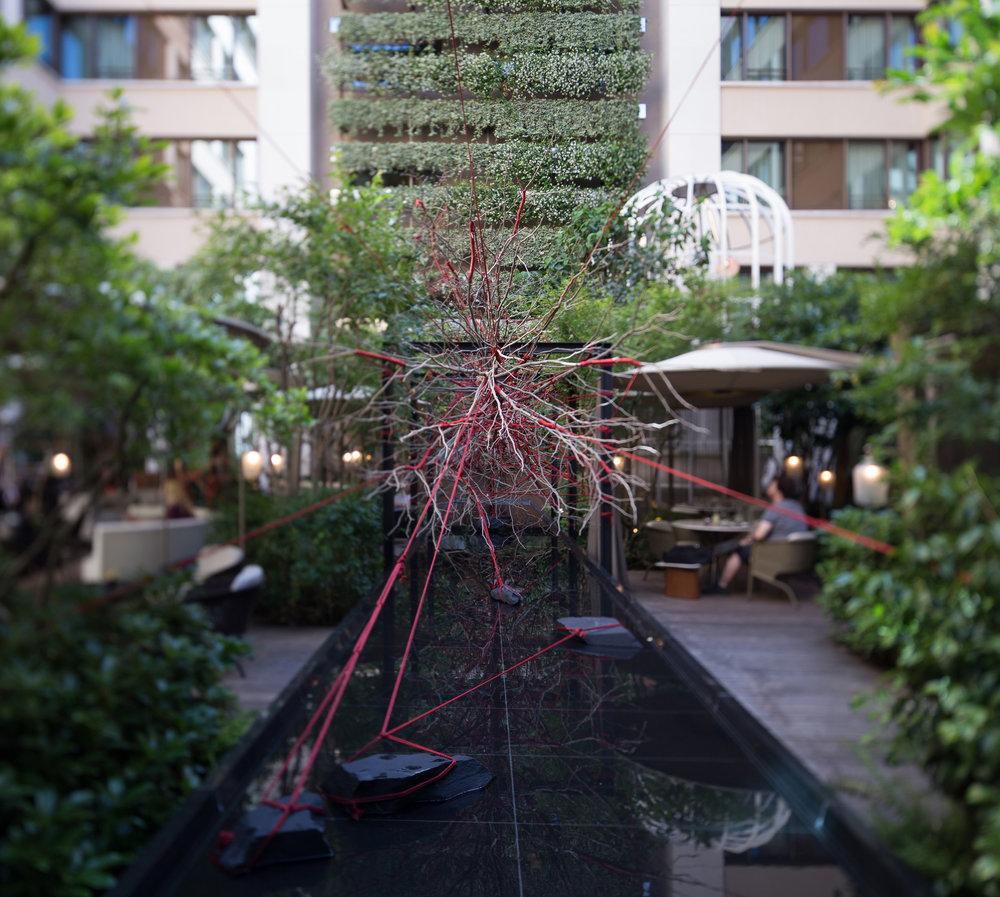 The Red Garden / Hôtel Mandarin Oriental Paris   Conception d'une installation végétale insolite mêlant l'univers élégant de Tanqueray au Shibari, l'art japonais de l'encordage.