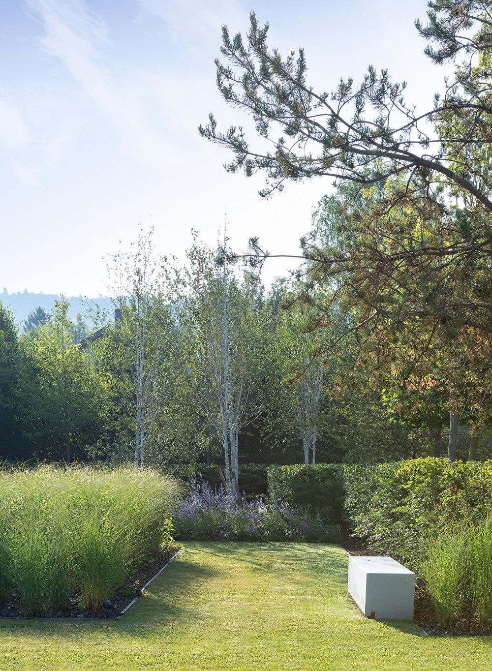 jardin_luxembourg_terrasses_jardins_outdoor_garden_christophe_gautrand_paysagiste_5.jpg