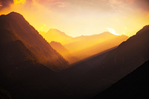 Satsang.earth: het Lichtpad