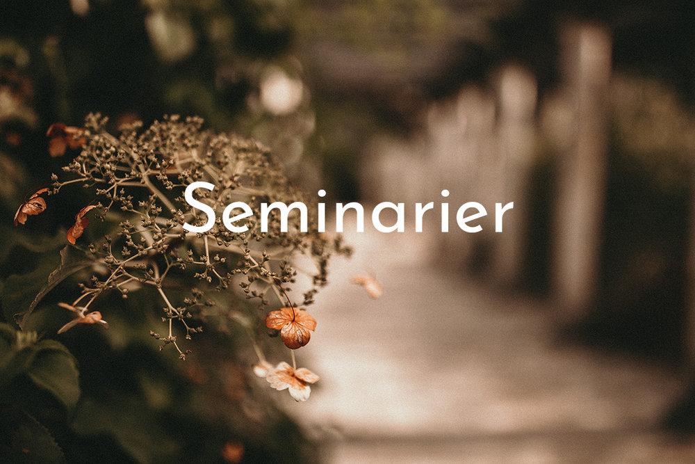 Läs mer om seminarierna som genomförs inom ramen för Norrländsk Invasion >>