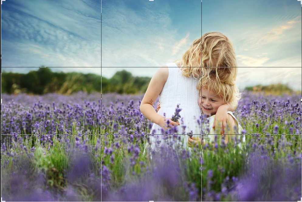 cambridgeshire-childrens-photography-hitchen-lavender.jpeg