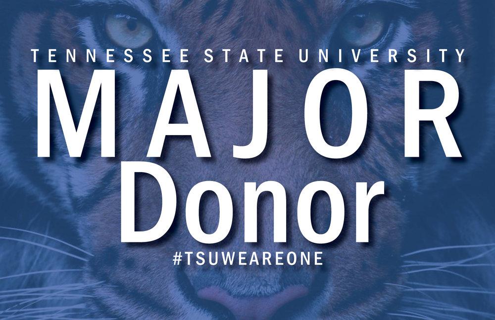 Major Donor Tiger.jpg