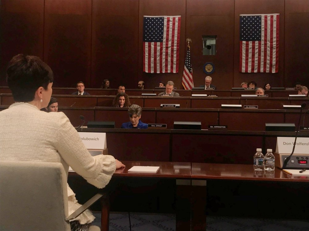 Executive Director Emily Holubowich testifies before the Joint Select Committee on Budget and Appropriations Process Reform.