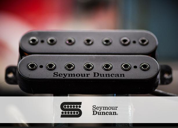 blogheader-Seymour duncan