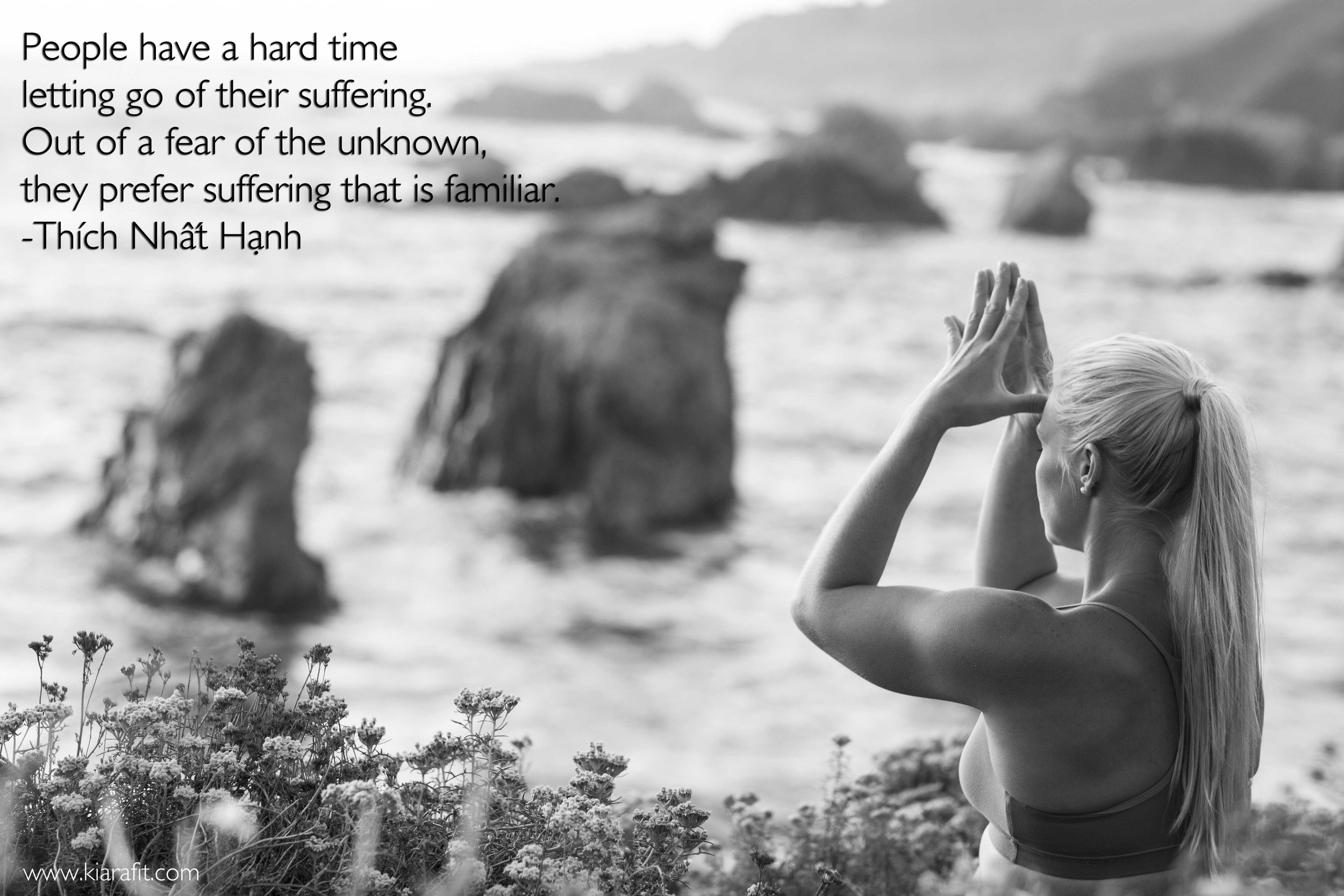 Letting Go Of Suffering Thich Nhat Hanh