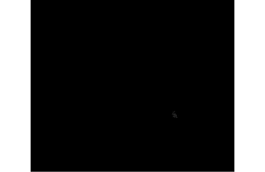 logo-divider.png