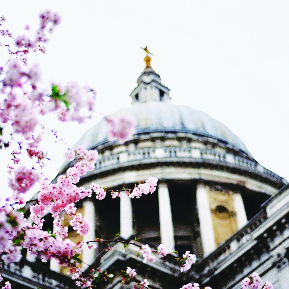 St Pauls Cathedral.jpg