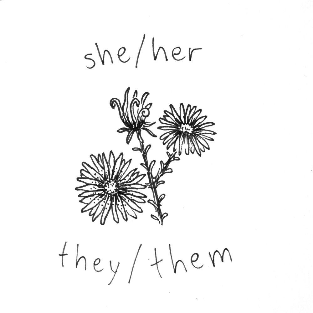 she_they.jpg