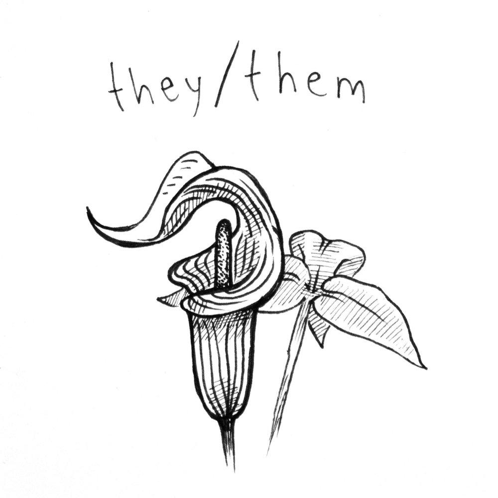 they_them.jpg