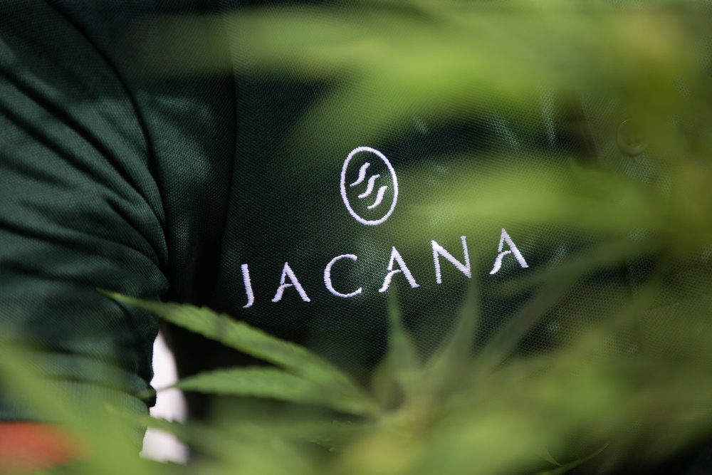 - For all press enquiries, image or media requests, releases and statements, please contact press@jacana.life