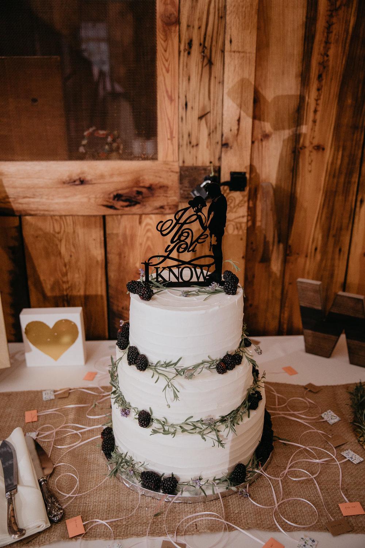 Doe Creek Farm - Weddings - Virginia - Best Wedding Photographer - Pat Cori Photography-45.jpg