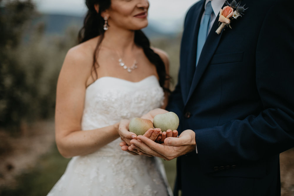 Doe Creek Farm - Weddings - Virginia - Best Wedding Photographer - Pat Cori Photography-61.jpg