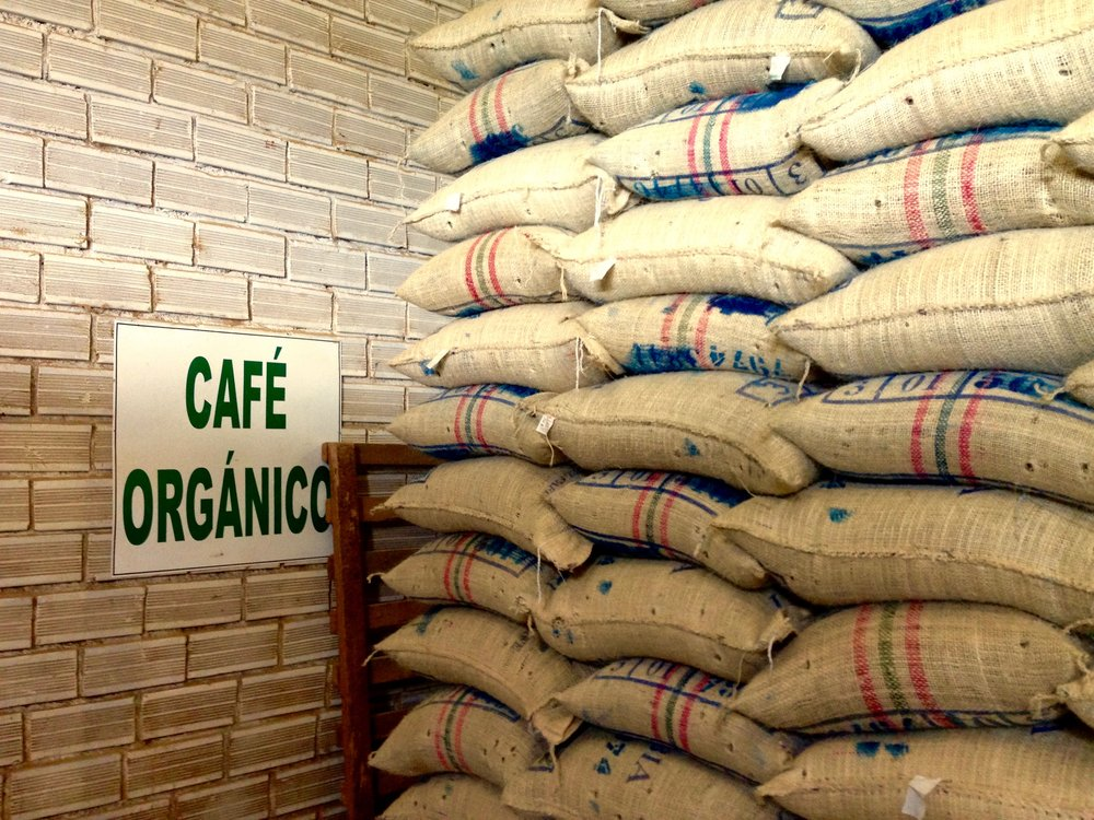 53. Café Organico Almacafe Dry Mill, Montenegro, Quindio, Colombia.jpg