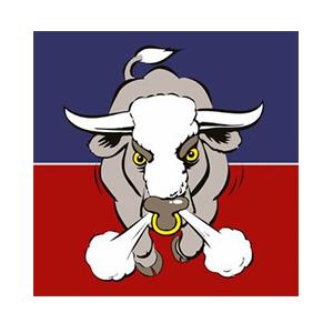 Aylesford-Bulls.jpg