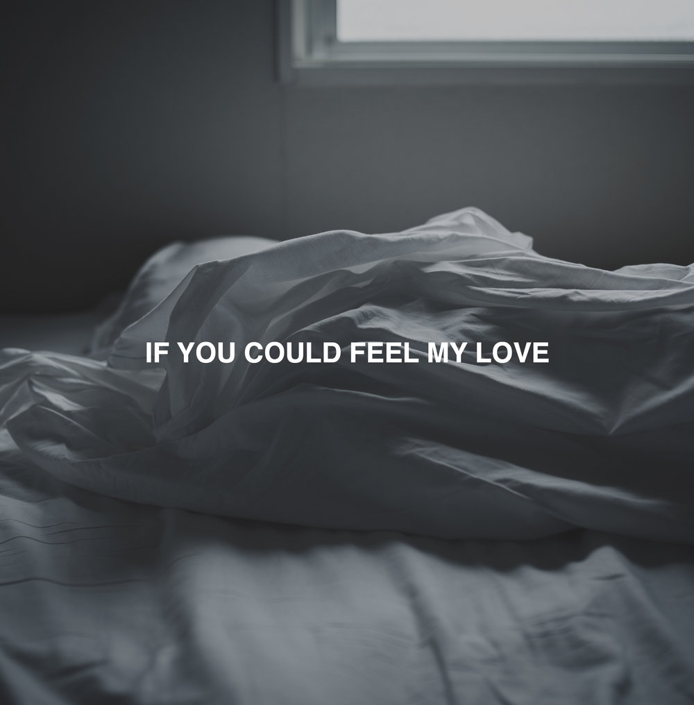 If You Could Feel My Love Veaux Single Track Album