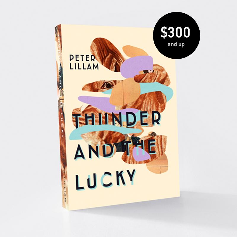 ThunderAndTheLucky_price.jpg