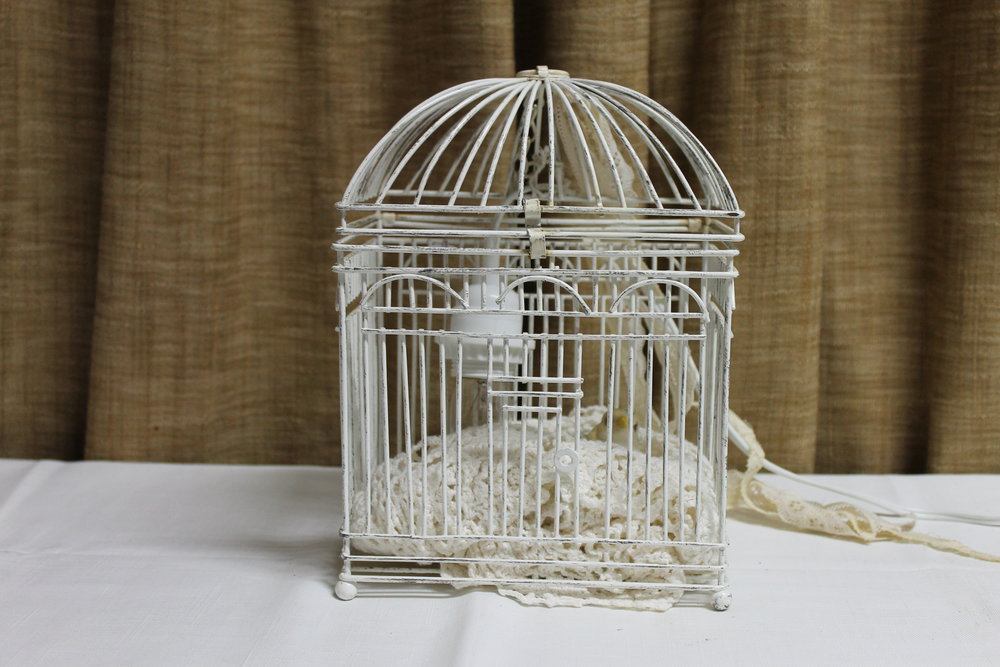 Custom Bird Cage Lamp