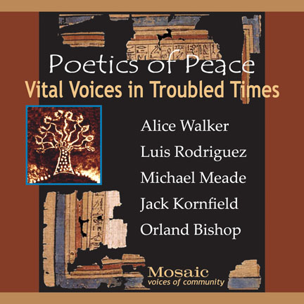 Vital Voices in Troubled Times 432 x 432.jpg