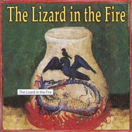 The Lizard in the Fire.JPG